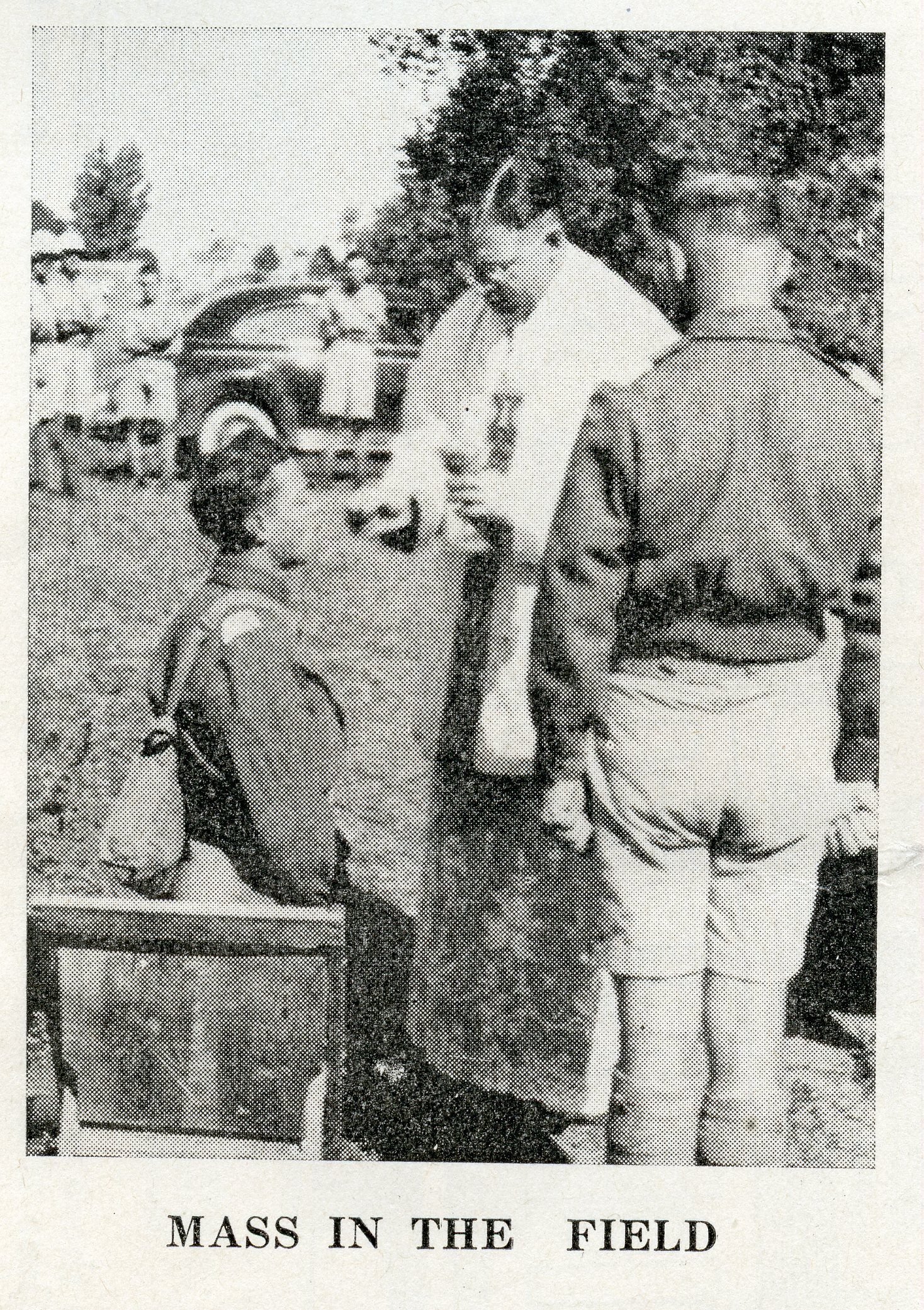 Mass in the field
